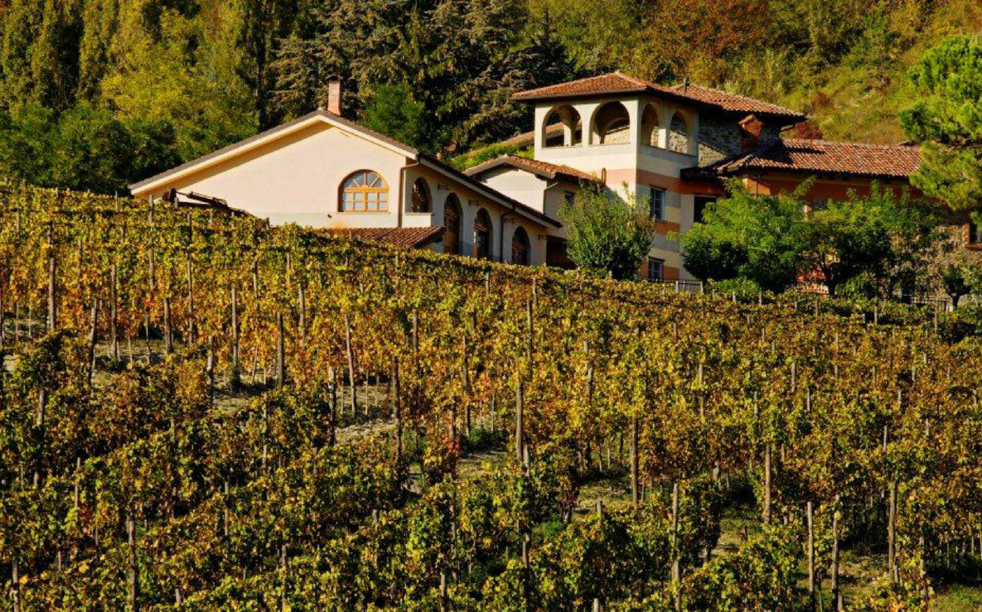 Bed & Breakfast and Vineyards in Piedmont